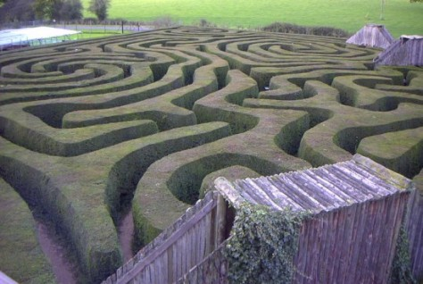Perhaps run into this maze and buy some time.