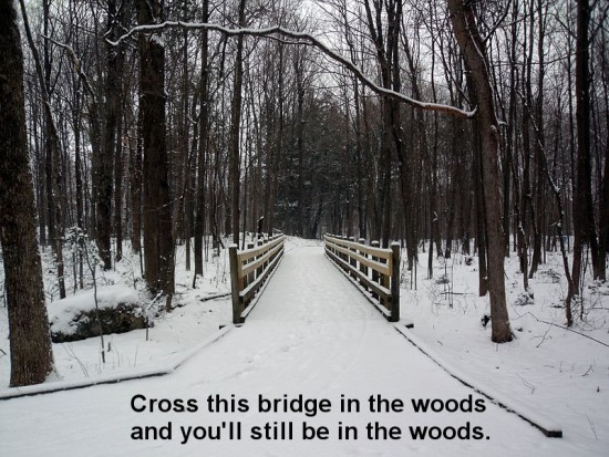 Cross this bridge in the woods and you'll still be in the woods.