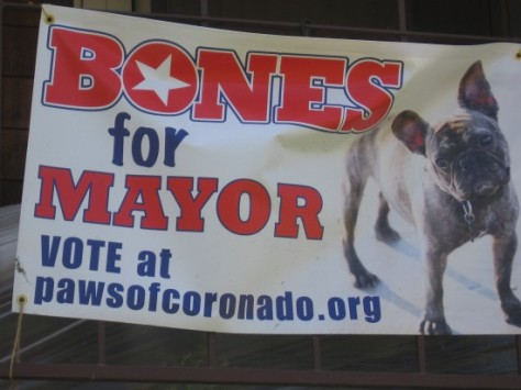 Dog runs for mayor of enlightened California city.