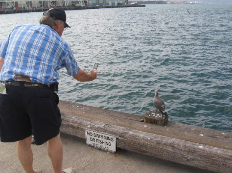 Excited tourist pauses to carefully photograph a fascinating pigeon.